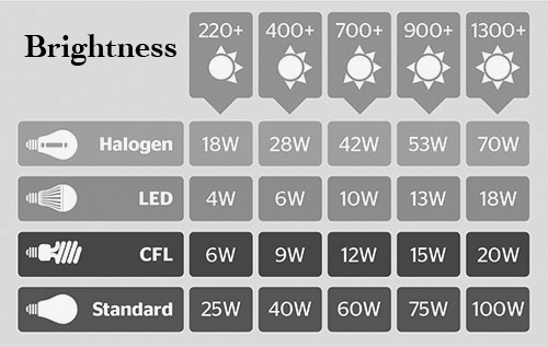 light-bulb-brightness-comparison-369885 copy