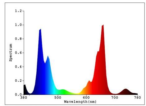Spectrum_704