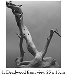 Deadwood.1.blog
