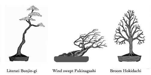 Lit, broom&wind