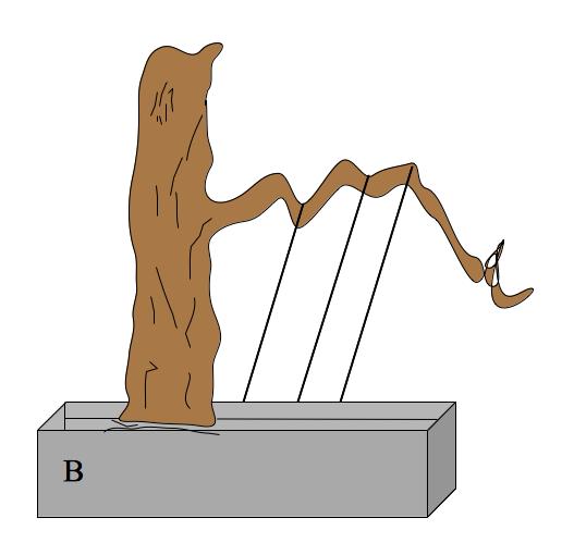 conifer-wiring-b