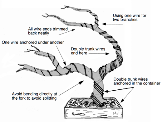how to wire a tree.part.2.b