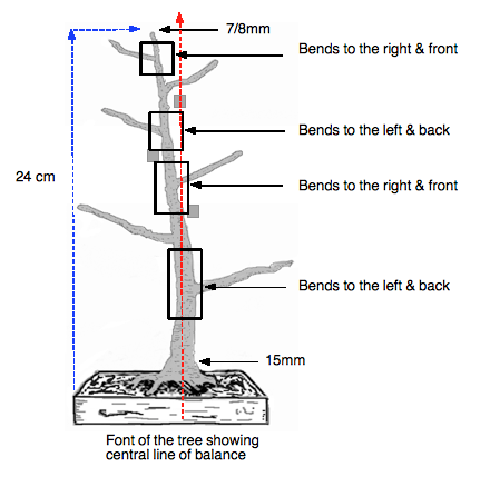 Tree showing bends part.2.b